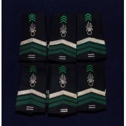 Lot de Fourreaux Légion Cavalerie Brigadier-chef 10 ans d'ancienneté (20 paires)