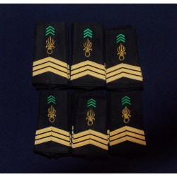 Lot de Fourreaux Légion Infanterie Sergent-chef (20 paires)