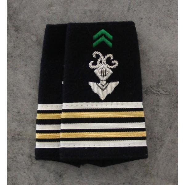 Chasseurs Métropolitains Lieutenant-Colonel
