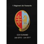 Régiments Armes Blindées et Cavaleries (10)